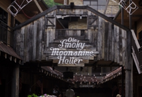 The Holler in Gatlinburg Image