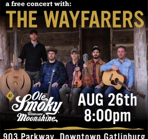 The Wayfarers LIVE at the Holler
